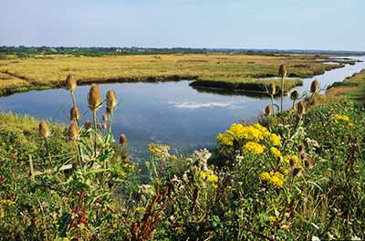 An idyllic summer view over Pennington Marshes - the wetlands here no more than hint at their former use as salterns