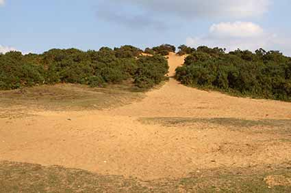 The disused sand pit