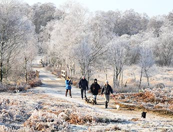 A group of walkers enjoy a beautiful, crisp morning at Shatterford on a day when the landscape is brightened by hoar frost