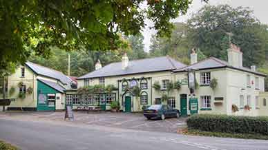 New Forest Inn, Emery Down