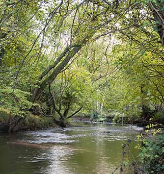 The Lymington River near Roydon Manor
