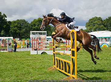 Show Jumping in the West Ring, New Forest Show